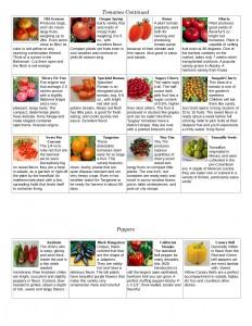 catalog_pg2